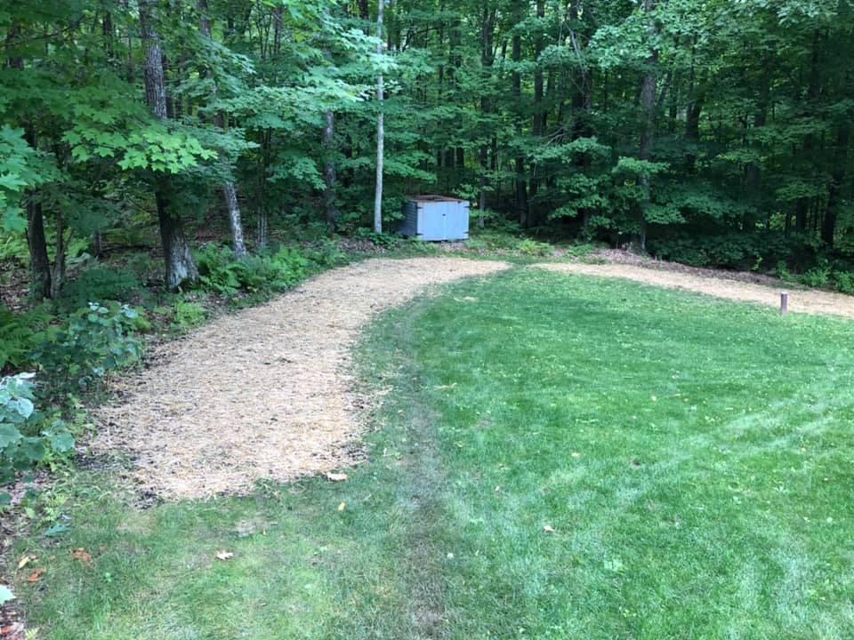 Lawn Prep & Seeding